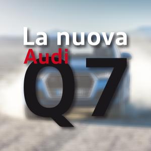 NuovaQ7_Anteprima_300x300